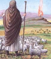 El trato a los animales en el Judaísmo